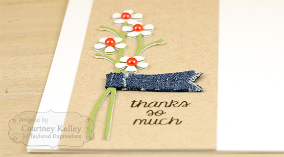 Courtney Kelley - Thanks So Much Detail