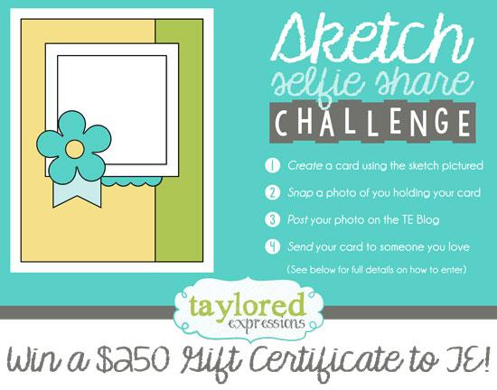 TE sketch challenge